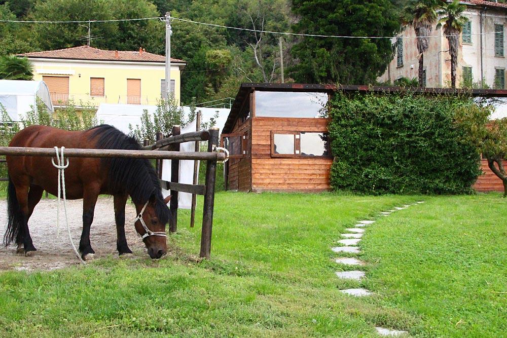 Fattoria dei ragazzi casa dei ragazzi iama onlus for Piani di casa di fattoria di cavalli